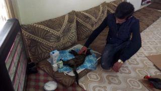 Çatıda sıkışan kediyi kurtararak evinde misafir etti