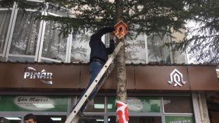 Çukurca'da kuşlar için ağaçlara 100 adet yuva yerleştirildi