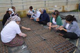 (Özel) Kadınlardan türkülü tohum ekimi