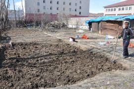 Yüksekova'da havalar ısındı, toprağa tohumlar atılmaya başlandı