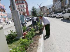 Hakkari Belediyesinden yeşillendirme çalışması