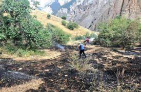 Hakkari'de anız yangını