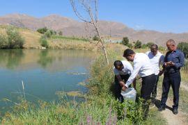 Hakkari'deki 29 gölete yavru balık bırakıldı