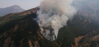 Akkaya köyünde orman yangını çıktı