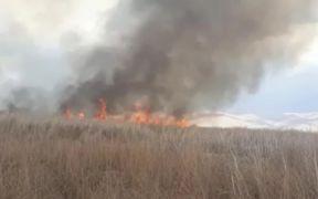 Yüksekova'daki Nehil Sazlığı'nda yangın
